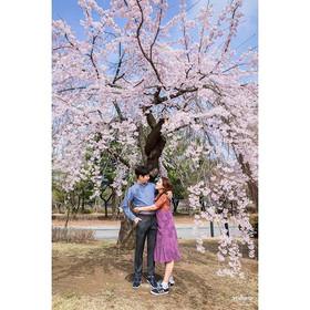 수양벚꽃이 인상적이었던 장소🌸_。_。_。_#벚꽃나무 아래에서 사랑스럽게