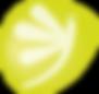Libellue_jaune_4x.png