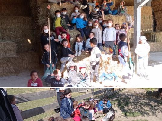 Mercredi loisirs - visite d'une ferme pédagogique à la Garde Adhémar