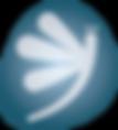 Libellue-bleue_4x.png