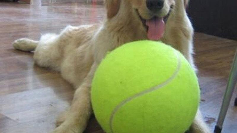 Jumbo Tennis Ball