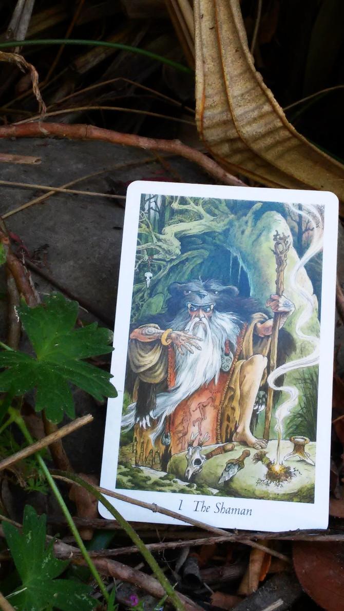 The Shaman - Card 1