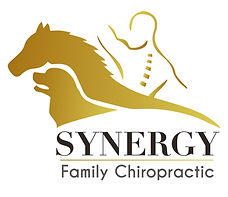 horse, dog and person chiropractic logo