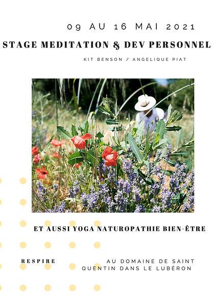 AFF stage meditation.jpg