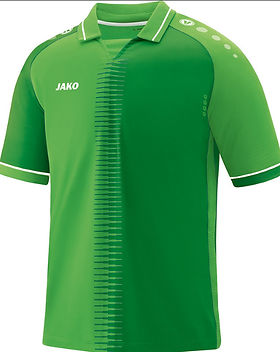 Maillot COMPETITION .jpg