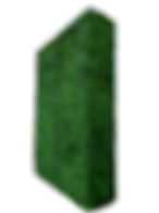 HEDGE 1.png