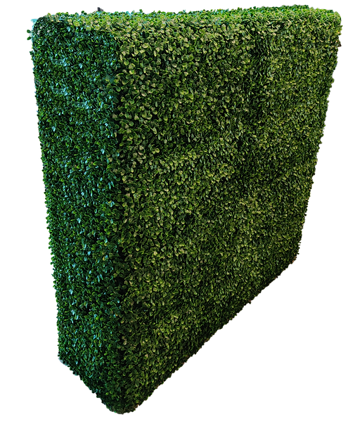 """Artificial Hedge Divider 42"""" x 42"""" x 14""""-Boxwood"""