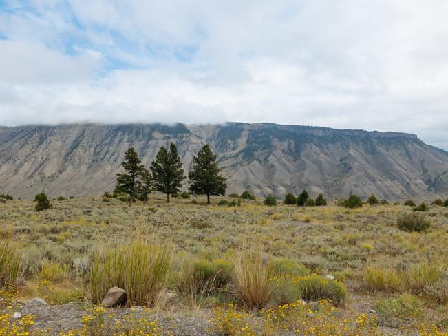 Yellowstone National Park & Jackson, Wyoming