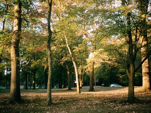 Fall 2018 on Kodak Portra400