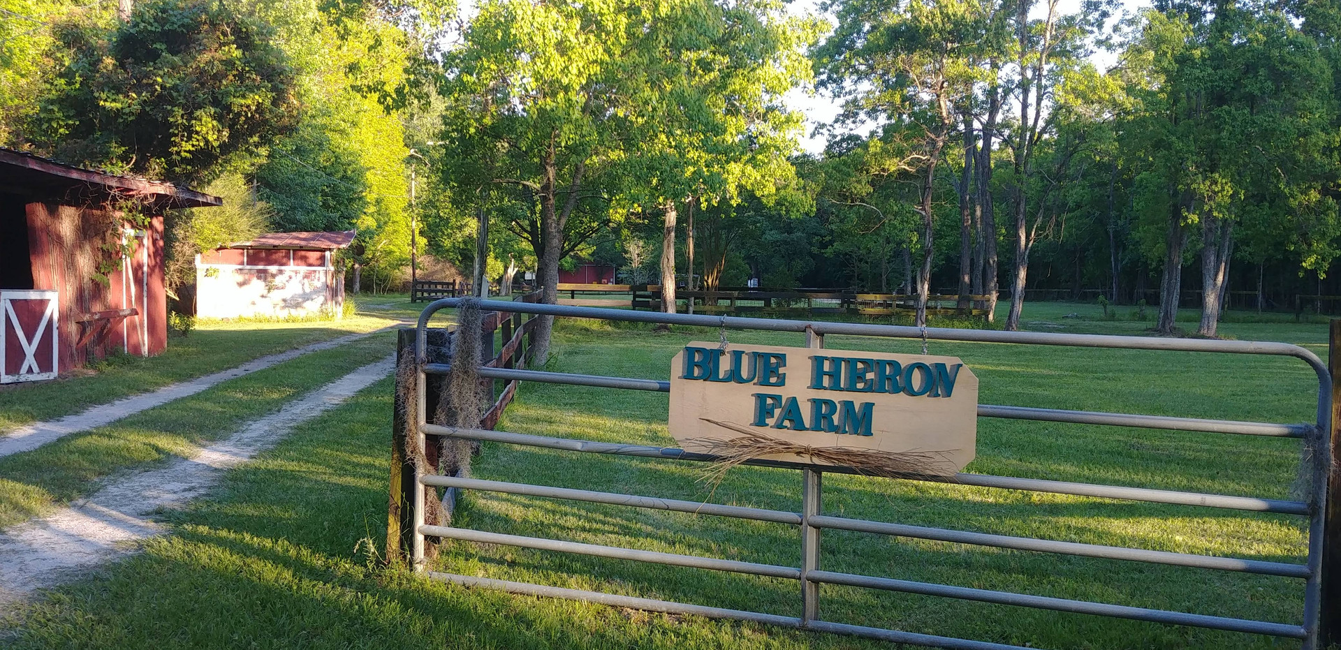 Our entry into the farm grounds