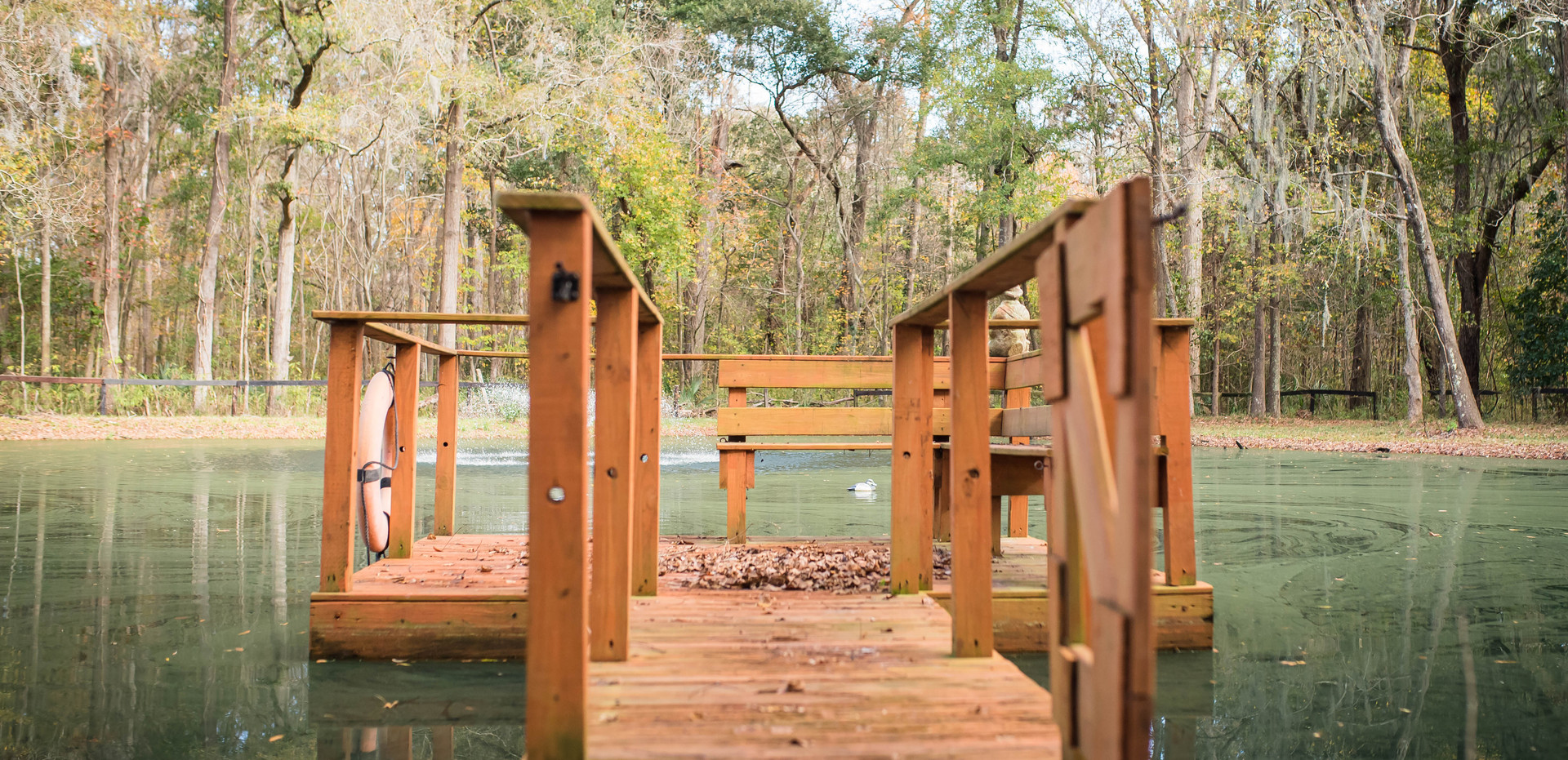 Our dock leading to our beautiful pond!