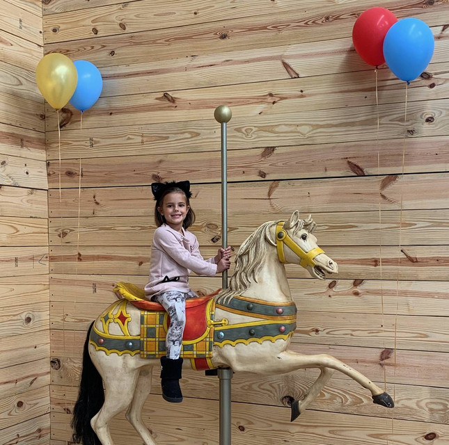 Our Carousel Horse is always popular with the kids!