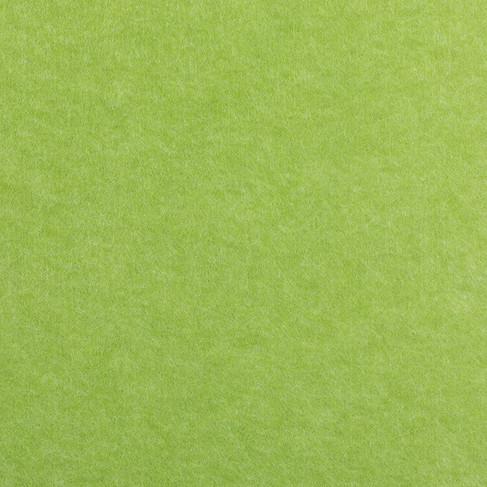 Frog - Grass.jpg