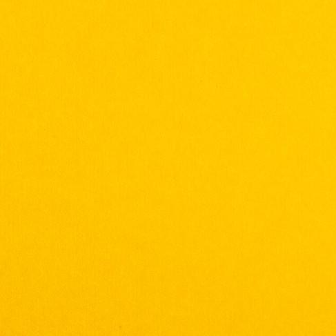 Canary - Sunshine.jpg
