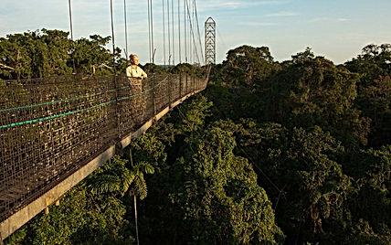 sacha lodge bridge .jpg