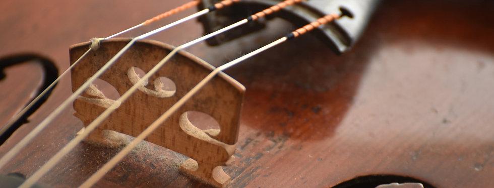 Geigensaiten Close up