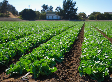 Are changing weather patterns affecting your farm? We want to know!
