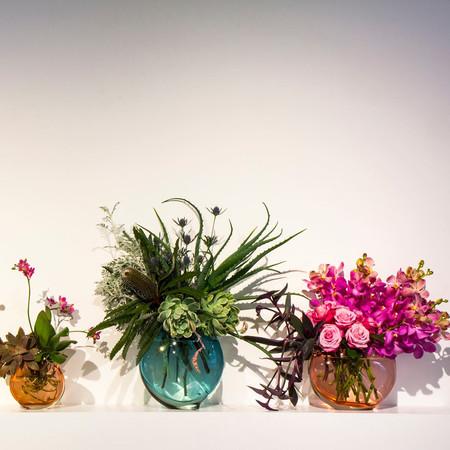 brave botanics in Schwarzrock glass