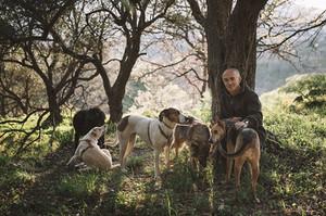 Ein Herz für Tiere - Hundepatenschaften