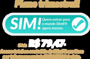 Botão TRIMESTRAL (1).png