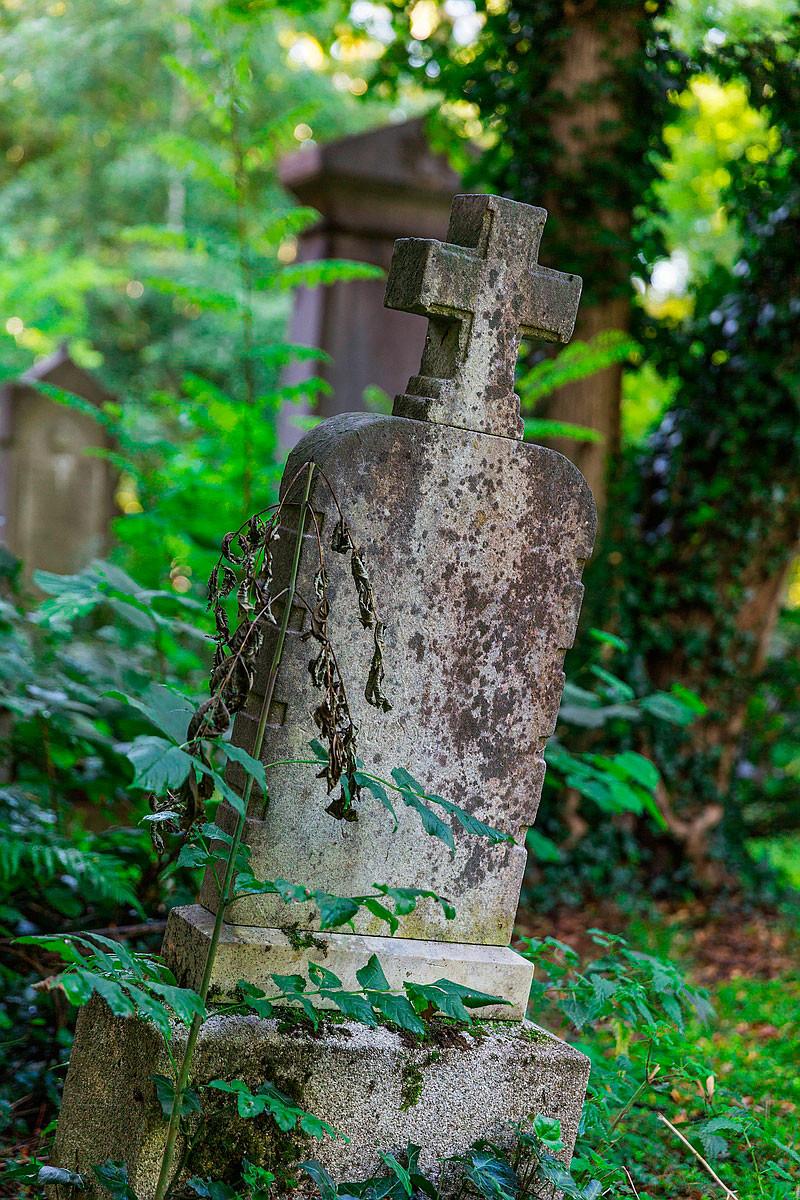 Freilicht Fotoführung Südfriedhof