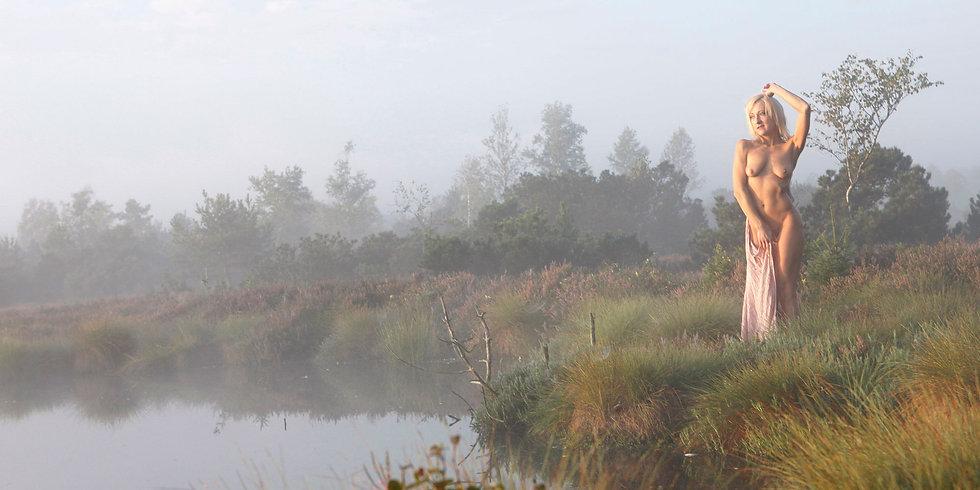 Nebel_2000px.jpg