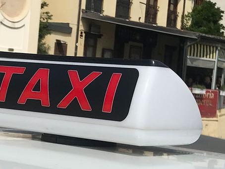 Taxifahren in Turin mit Hund