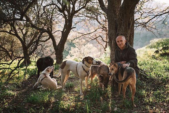 GUBLER_dog-friendly_01.jpg