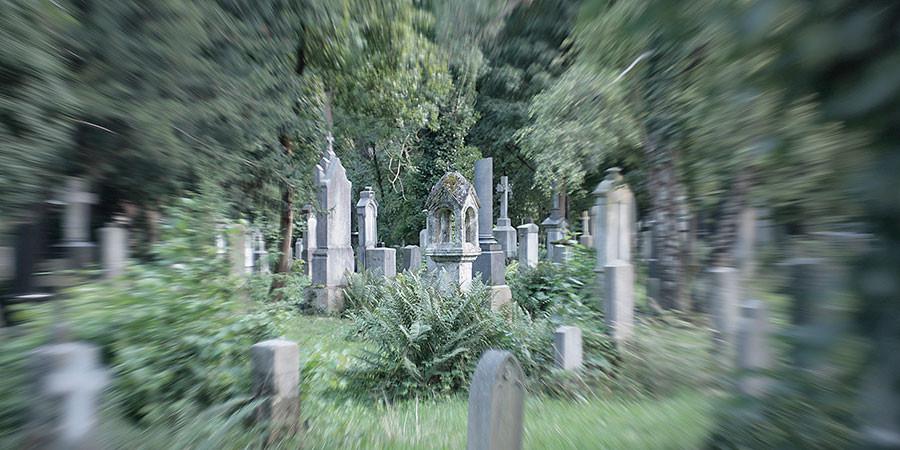 Freilicht Walk Südfriedhof