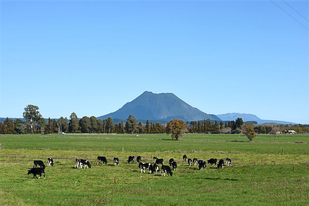 View_of_Putauaki_and_Tarawera_from_Awake