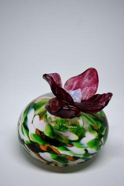 fushia et vert