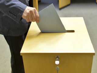 Выдвижение кандидатов на выборы директора.