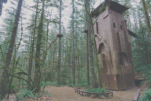 Camp_ClimbWall_Treated.jpg