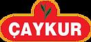 caykur-logo.png