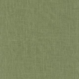 8673 Palm