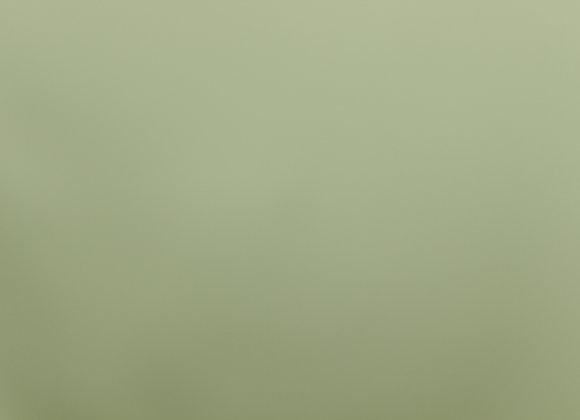 8578 Ocean Spray