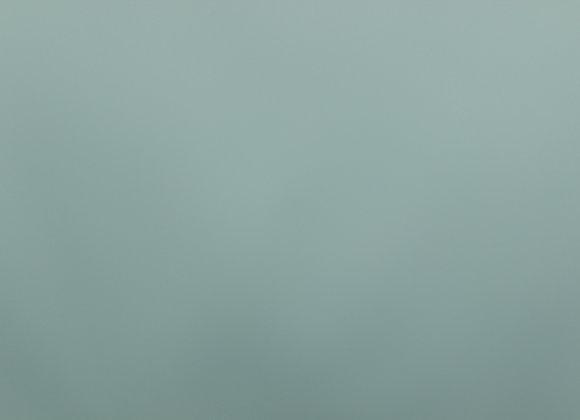 8578 Spray Mist