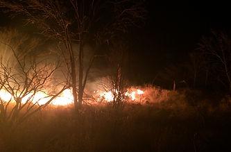 fires.jpg