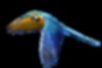 parrot-2837601_960_720.png