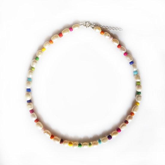 Collar Rainbow River