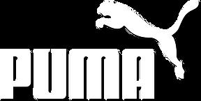 puma 2.png