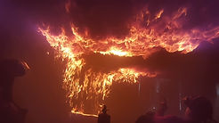 incendioencampo.JPG