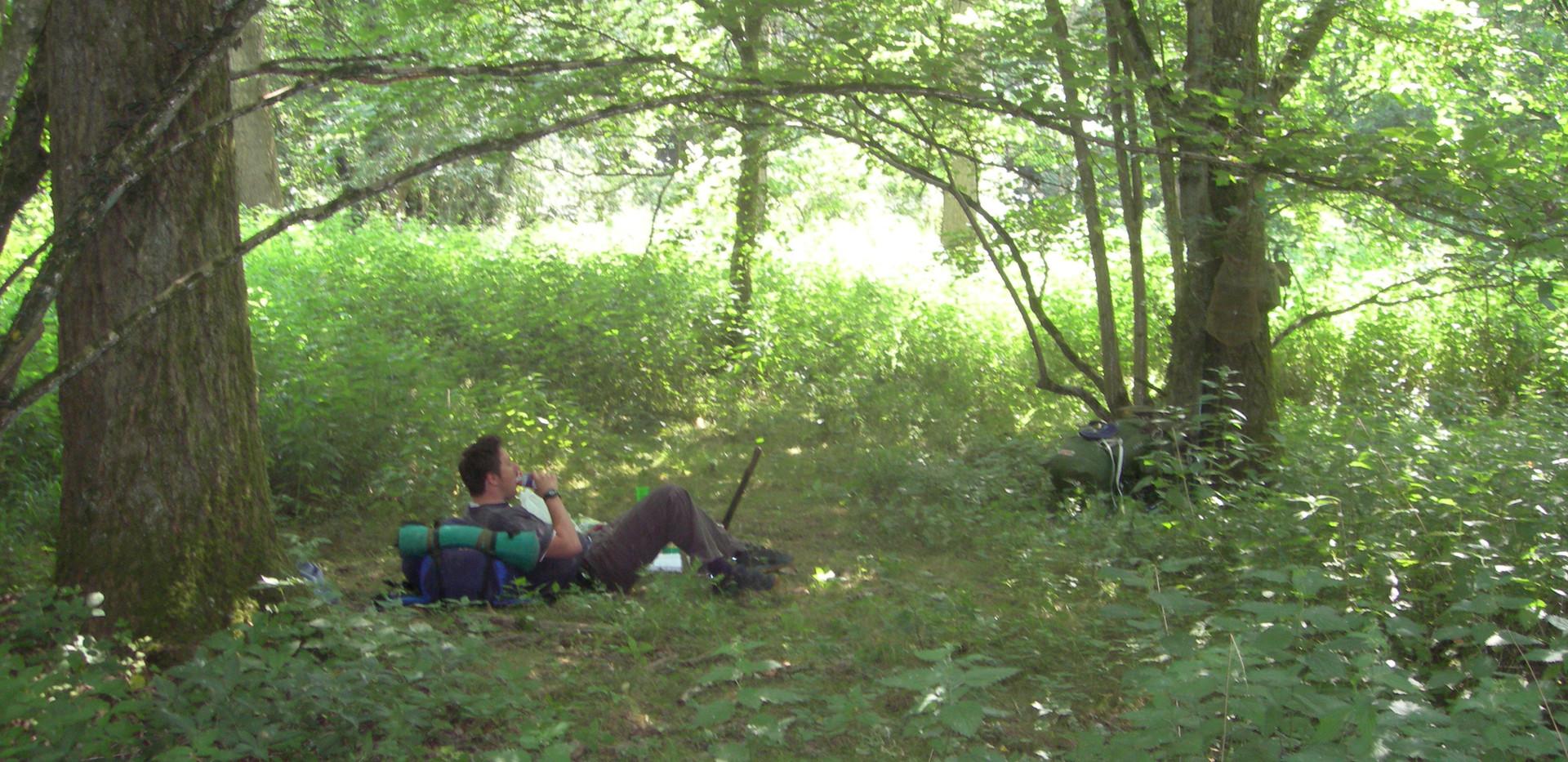 Lone Camper.jpg