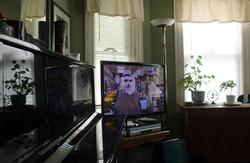 dogmanTV1