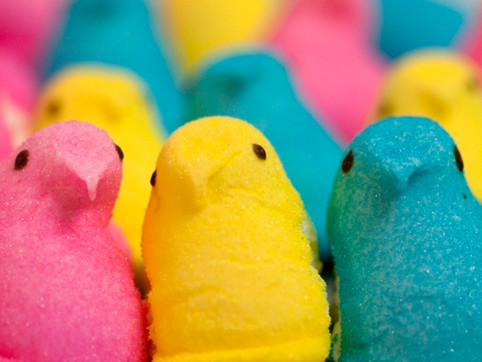 New Hatched: Peeps