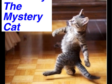 "Poetry in Poconos #2: ""Macavity: The Mystery Cat"""
