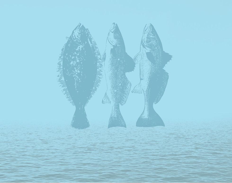 BG-withFish.jpg