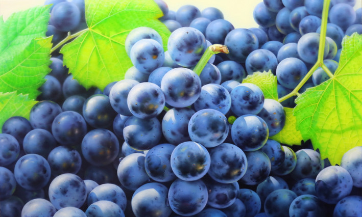 Grapes 100x60 oil on canvas 2020