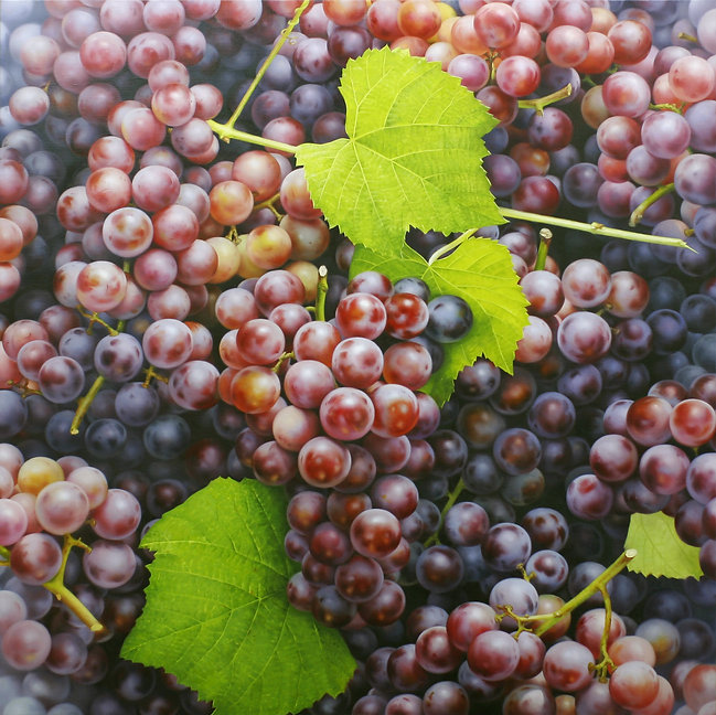 Grapes 110x110cm oil on canvas  2009 김대연