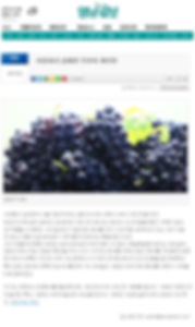 부산2013.jpg